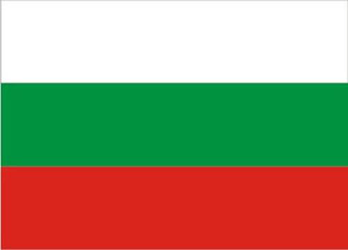 BG flag